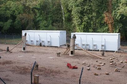 Plateforme CCDP installée sur le site CNRS de la station de primatologie de Rousset sur Arc