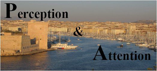 Perception et attention
